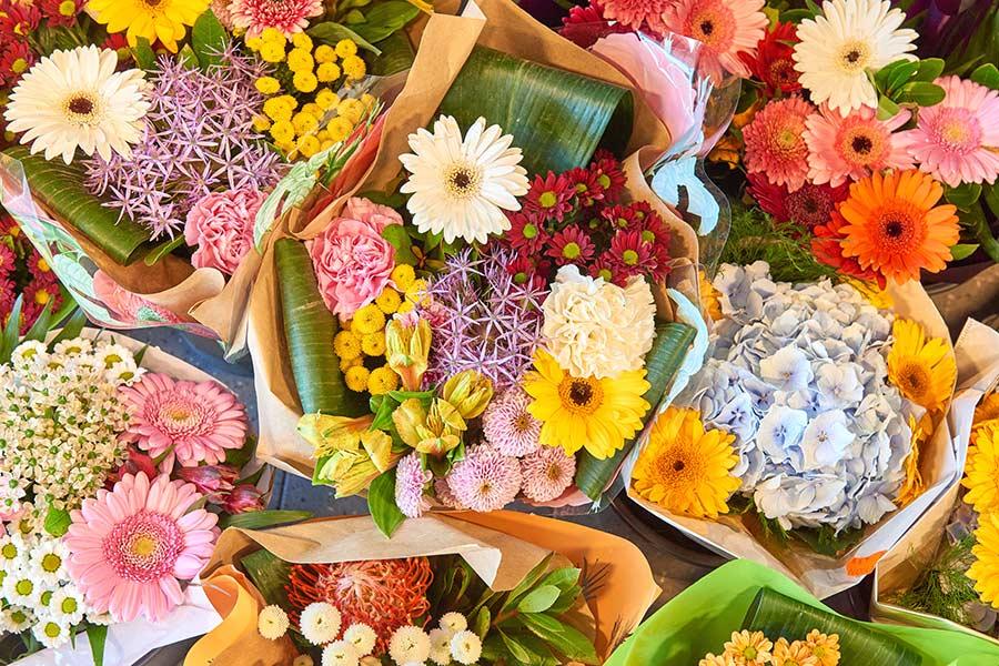 Blumen von EDEKA Göbel